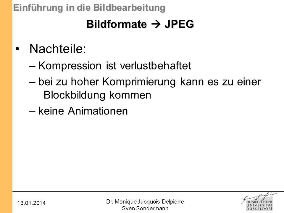 Einführung in die Bildbearbeitung 13.01.2014 Dr. Monique Jucquois-Delpierre Sven Sondermann Bildformate JPEG Nachteile: –Kompression ist verlustbehaft