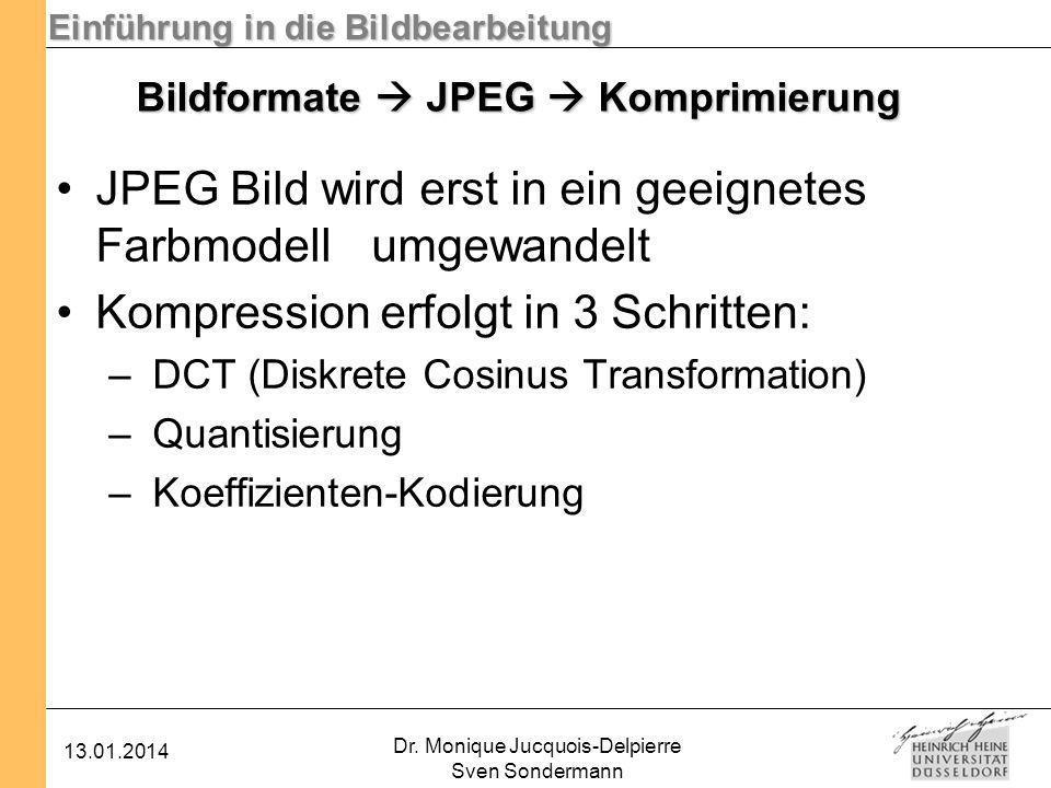 Einführung in die Bildbearbeitung 13.01.2014 Dr. Monique Jucquois-Delpierre Sven Sondermann Bildformate JPEG Komprimierung JPEG Bild wird erst in ein
