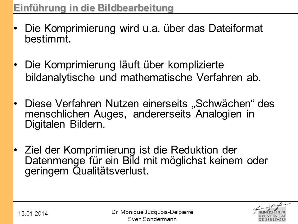 Einführung in die Bildbearbeitung 13.01.2014 Dr. Monique Jucquois-Delpierre Sven Sondermann Die Komprimierung wird u.a. über das Dateiformat bestimmt.
