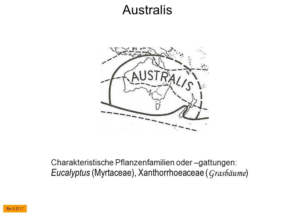 Australis Charakteristische Pflanzenfamilien oder –gattungen: Eucalyptus (Myrtaceae), Xanthorrhoeaceae ( Grasbäume ) Bio 8 II 17