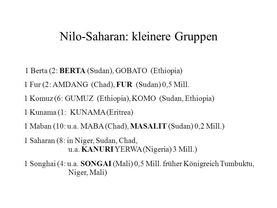 Khoisan (35) [rassische Unterschiede, Kalahiri Wüste, 160.000 Sprecher, Clicks, Sg-Pl-Allomorphe des Verbs] 1 Hatsa (1: 200 Sprecher in Tanzania), evtl.