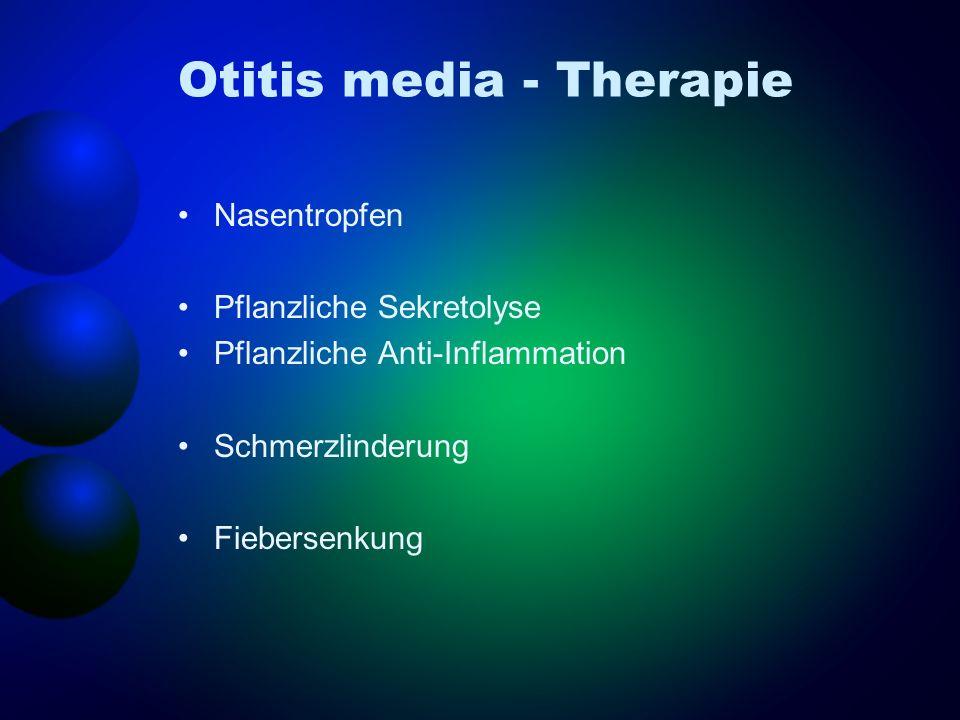 Otitis media - Therapie Nasentropfen Pflanzliche Sekretolyse Pflanzliche Anti-Inflammation Schmerzlinderung Fiebersenkung