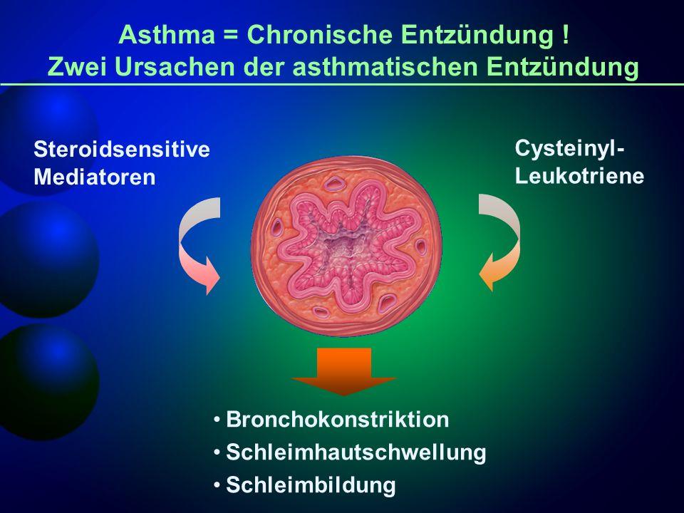 Cysteinyl- Leukotriene Steroidsensitive Mediatoren Asthma = Chronische Entzündung ! Zwei Ursachen der asthmatischen Entzündung Bronchokonstriktion Sch