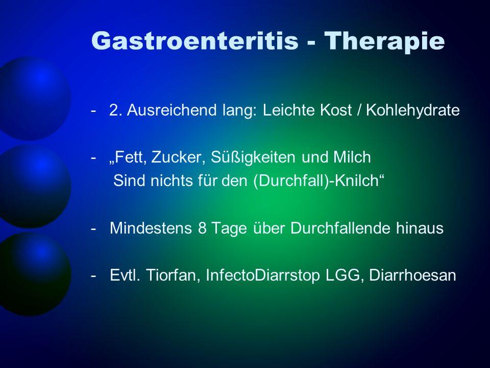 Gastroenteritis - Therapie -2. Ausreichend lang: Leichte Kost / Kohlehydrate -Fett, Zucker, Süßigkeiten und Milch Sind nichts für den (Durchfall)-Knil