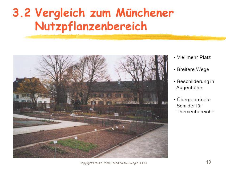 Copyright: Frauke Pöml, Fachdidaktik Biologie HHUD 9 3.2 Parallele Wegeführung im Sommer
