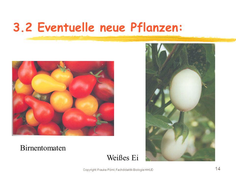 Copyright: Frauke Pöml, Fachdidaktik Biologie HHUD 13 3.2 Eventuelle neue Pflanzen: Gelbes Posthörnchen Blaue Speck
