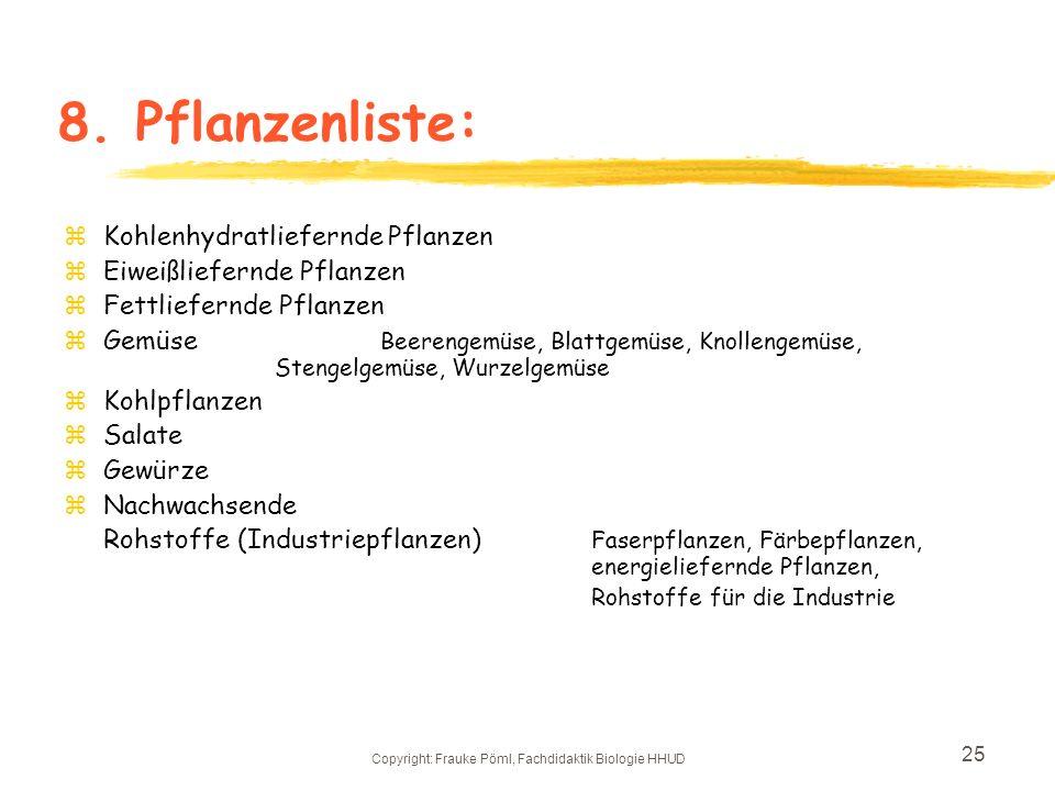 Copyright: Frauke Pöml, Fachdidaktik Biologie HHUD 24 7.Skizze des neuen Nutzpflanzenbereichs Gelb: Wege und Plätze Grün: Beete Kohlenhydratliefernde