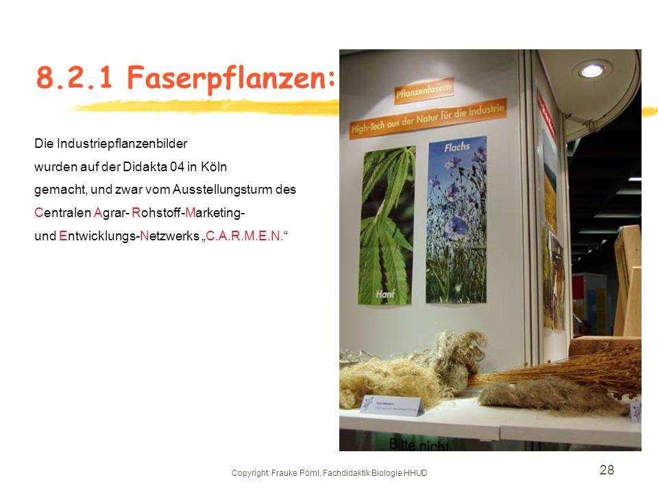 Copyright: Frauke Pöml, Fachdidaktik Biologie HHUD 27 8.2 Industriepflanzen: