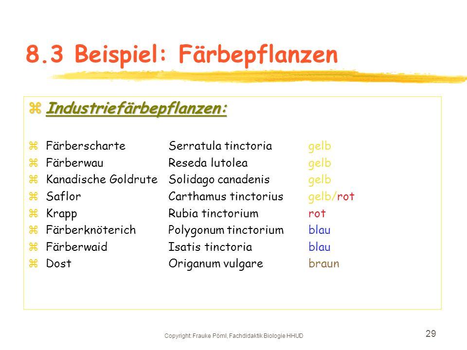 Copyright: Frauke Pöml, Fachdidaktik Biologie HHUD 28 8.2.1 Faserpflanzen: Die Industriepflanzenbilder wurden auf der Didakta 04 in Köln gemacht, und