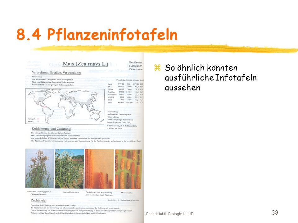 Copyright: Frauke Pöml, Fachdidaktik Biologie HHUD 32 8.3 Färbepflanzen Färberwai d KrappFärberknöterich