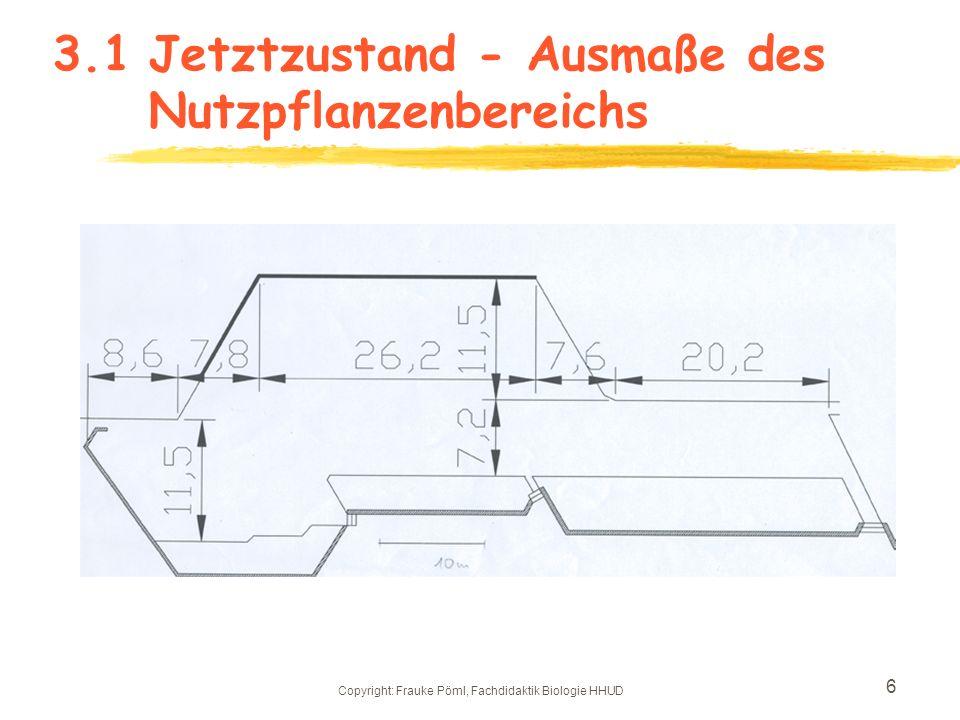 Copyright: Frauke Pöml, Fachdidaktik Biologie HHUD 5 3.Jetztzustand des Nutzpflanzenbereichs Der Nutzpflanzenbereich umfasst ein Areal von 986,5 qm, d