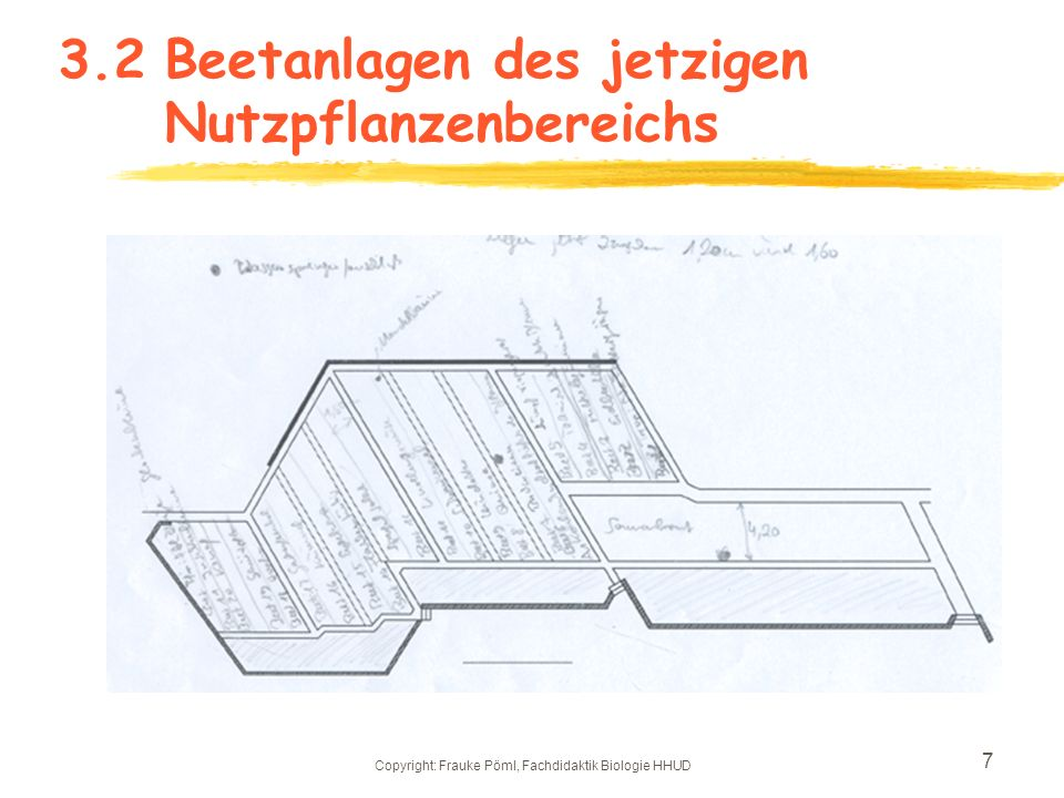 Copyright: Frauke Pöml, Fachdidaktik Biologie HHUD 6 3.1Jetztzustand - Ausmaße des Nutzpflanzenbereichs