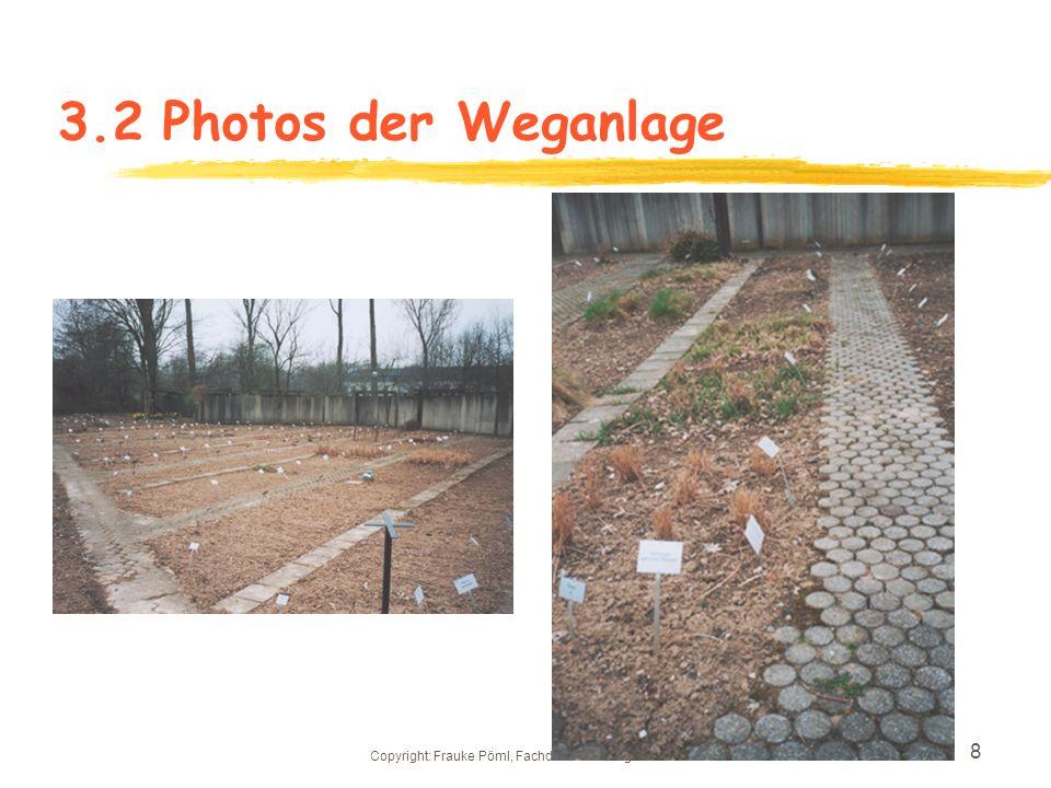Copyright: Frauke Pöml, Fachdidaktik Biologie HHUD 7 3.2Beetanlagen des jetzigen Nutzpflanzenbereichs