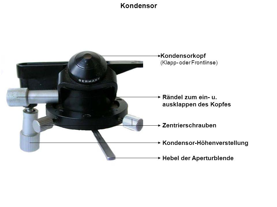 Kondensor Kondensorkopf (Klapp- oder Frontlinse) Rändel zum ein- u. ausklappen des Kopfes Zentrierschrauben Kondensor-Höhenverstellung Hebel der Apert