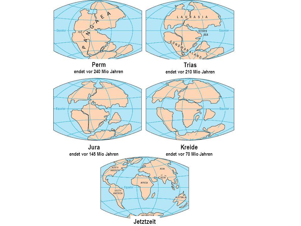 Perm endet vor 240 Mio Jahren Trias endet vor 210 Mio Jahren Jura endet vor 145 Mio Jahren Kreide endet vor 70 Mio Jahren Jetztzeit