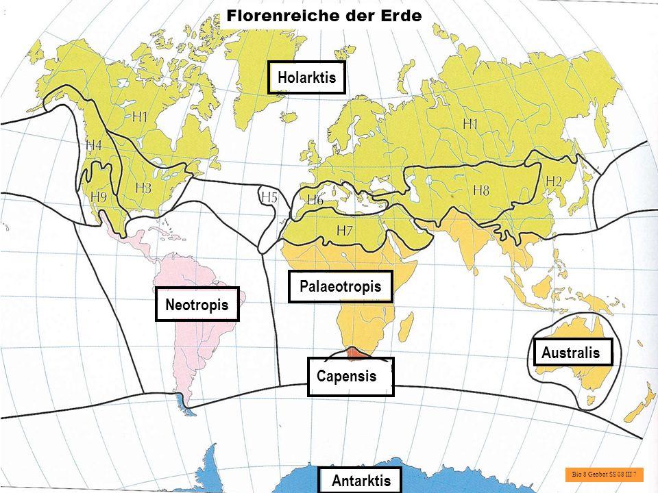 Florenreich Florenregion Florenprovinz Florenbezirk Bio 8 Geobot SS 08 III 8