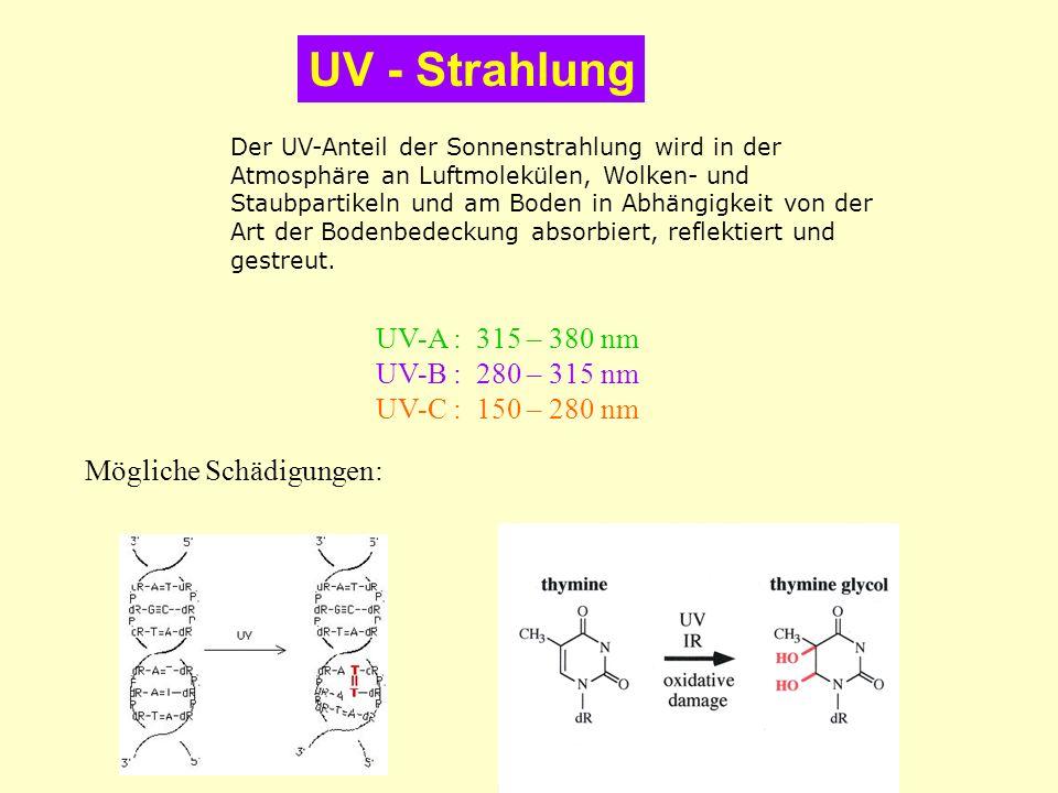 Der UV-Anteil der Sonnenstrahlung wird in der Atmosphäre an Luftmolekülen, Wolken- und Staubpartikeln und am Boden in Abhängigkeit von der Art der Bod