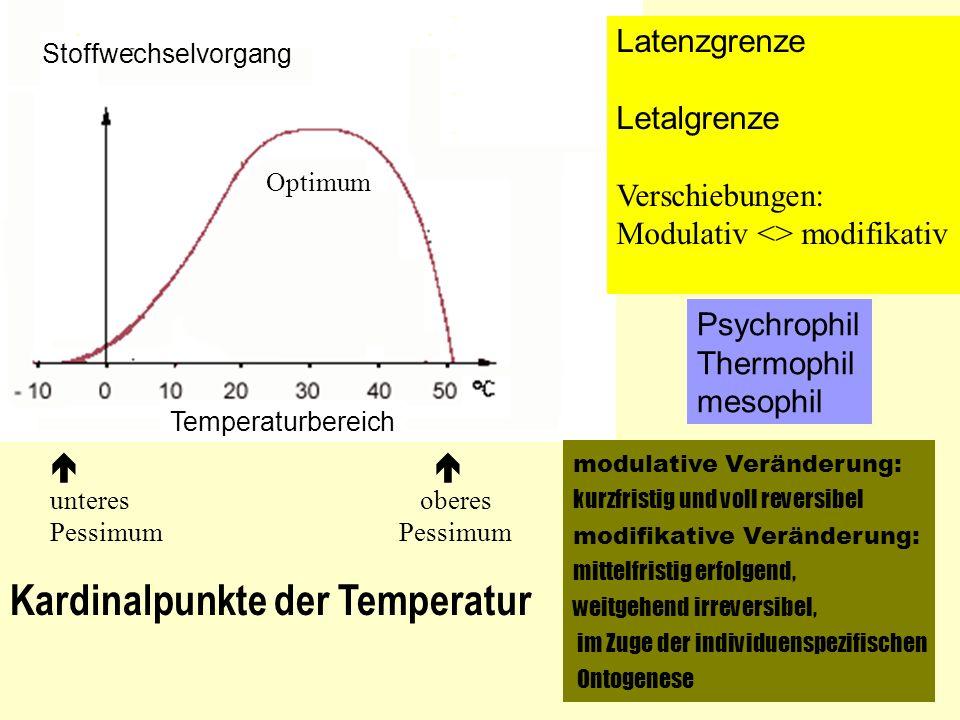 . Stoffwechselvorgang Temperaturbereich Optimum unteres oberes Pessimum Kardinalpunkte der Temperatur Latenzgrenze Letalgrenze Verschiebungen: Modulat