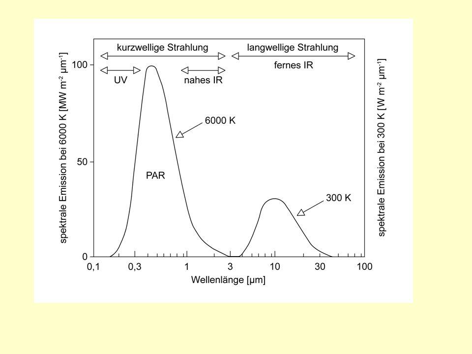 Erkältungsempfindlich (chilling sensitive): Schädigung bei > 0°C Frostempfindlich : Schädigung zwischen 0°C und ca.