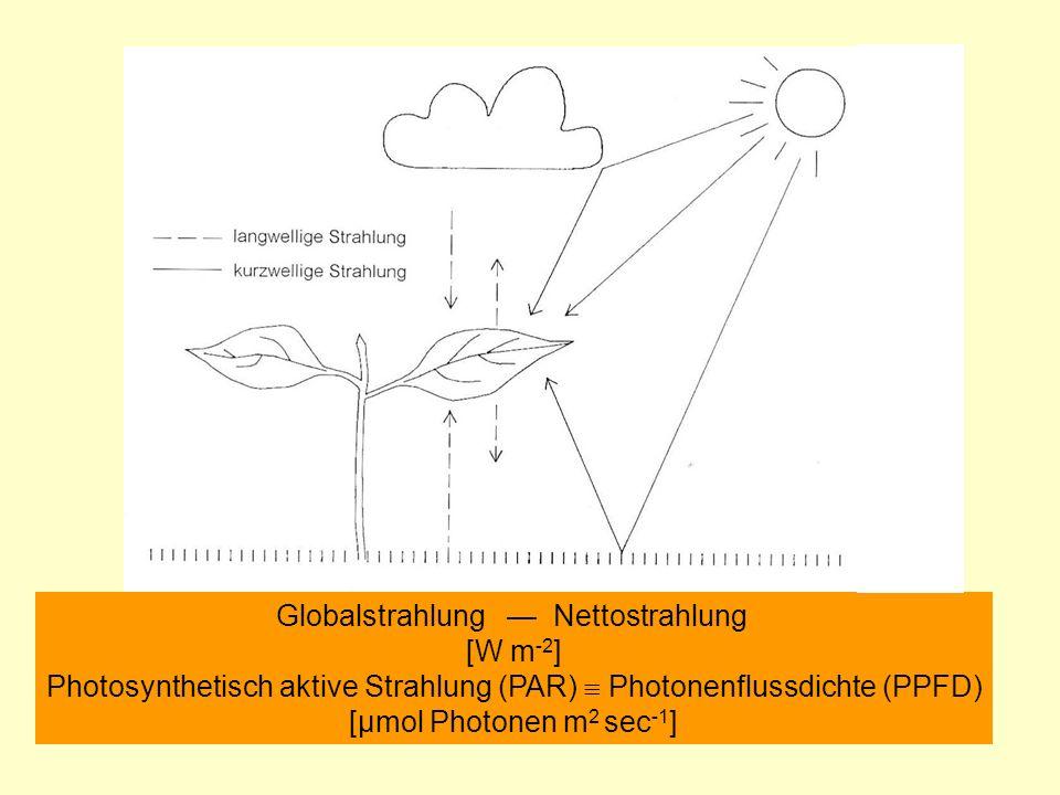 Globalstrahlung Nettostrahlung [W m -2 ] Photosynthetisch aktive Strahlung (PAR) Photonenflussdichte (PPFD) [µmol Photonen m 2 sec -1 ]