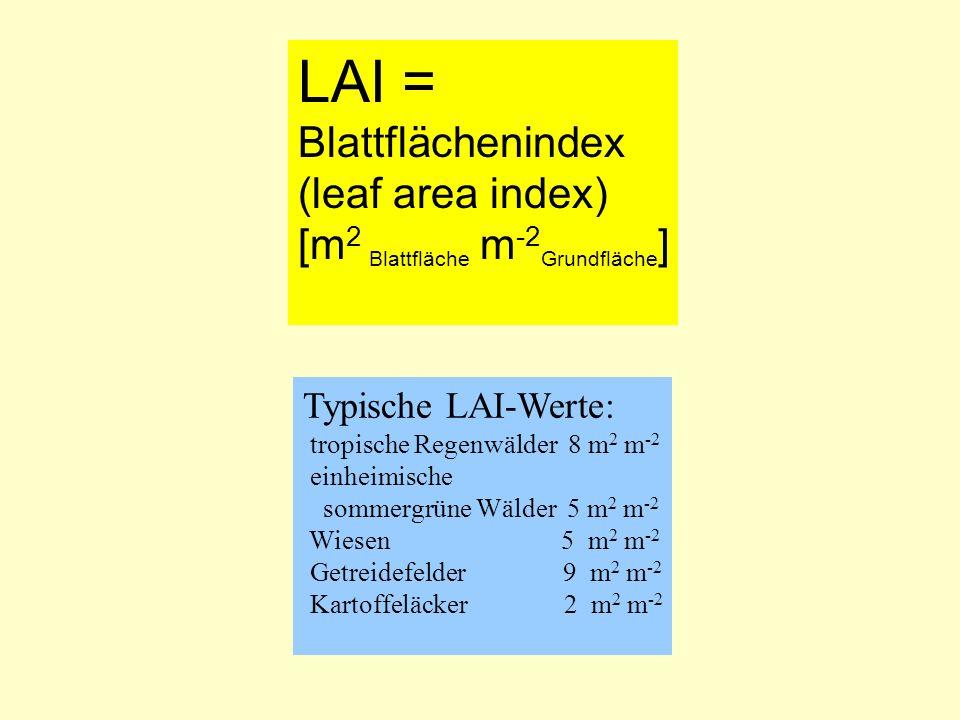 LAI = Blattflächenindex (leaf area index) [m 2 Blattfläche m -2 Grundfläche ] Typische LAI-Werte: tropische Regenwälder 8 m 2 m -2 einheimische sommer