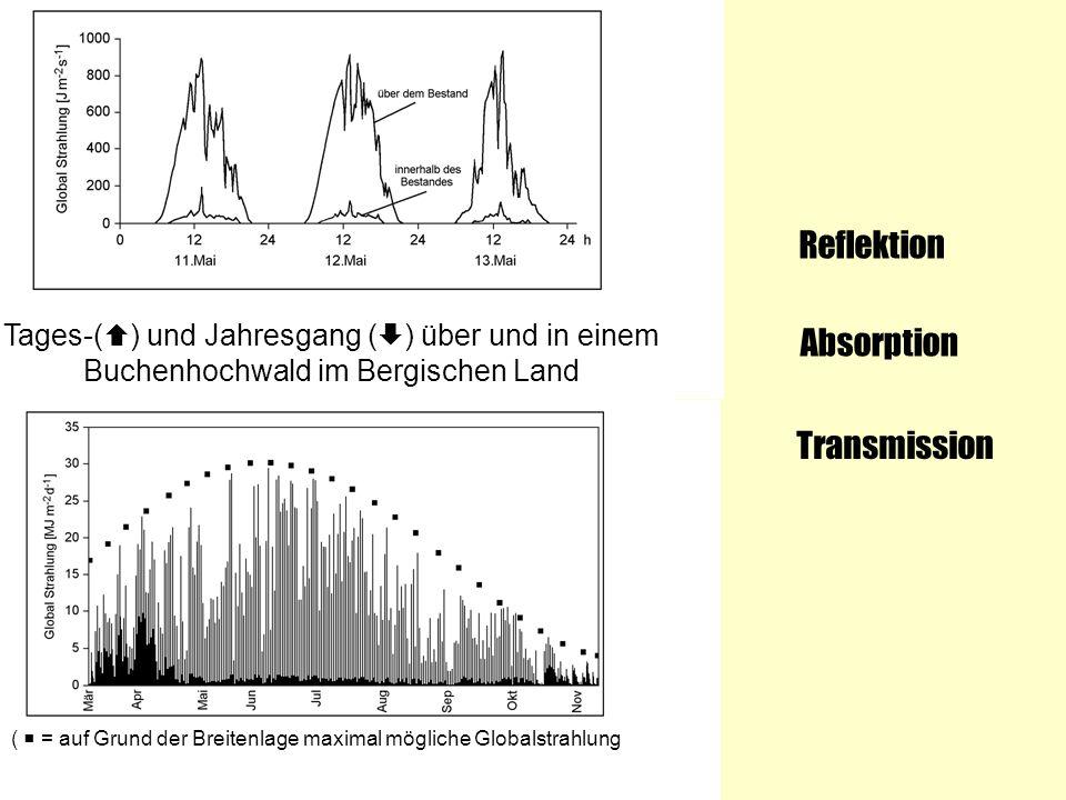 Tages-( ) und Jahresgang ( ) über und in einem Buchenhochwald im Bergischen Land ( = auf Grund der Breitenlage maximal mögliche Globalstrahlung) Refle