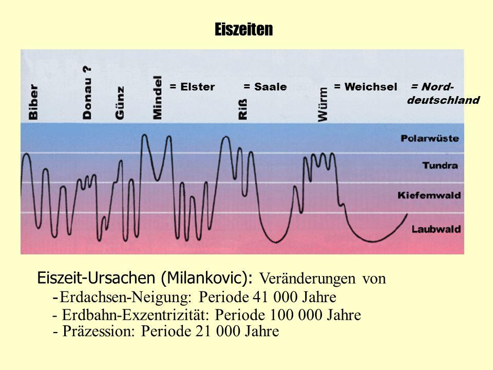 = Elster= Saale= Weichsel = Nord- deutschland Eiszeiten Eiszeit-Ursachen (Milankovic): Veränderungen von - Erdachsen-Neigung: Periode 41 000 Jahre - E