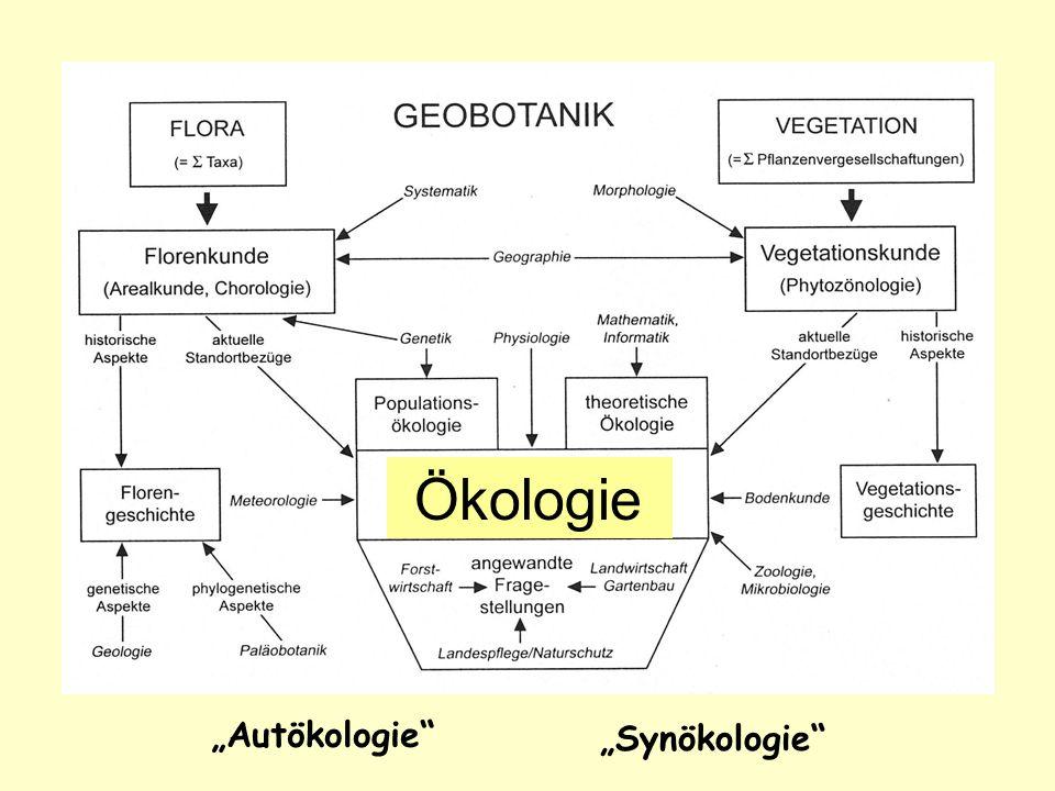 Ökologie Autökologie Synökologie