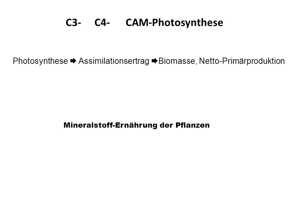C3- C4- CAM-Photosynthese Photosynthese Assimilationsertrag Biomasse, Netto-Primärproduktion Mineralstoff-Ernährung der Pflanzen