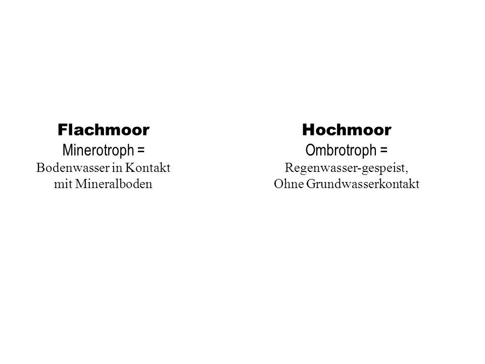 Flachmoor Minerotroph = Bodenwasser in Kontakt mit Mineralboden Hochmoor Ombrotroph = Regenwasser-gespeist, Ohne Grundwasserkontakt