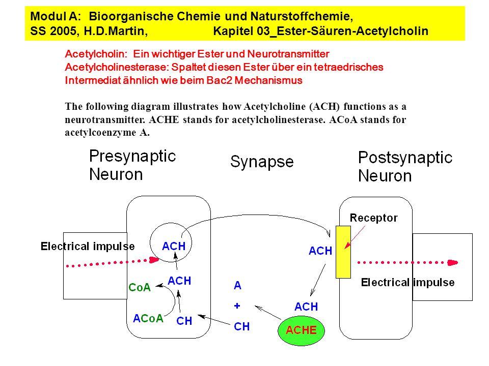 Acetylcholin: Ein wichtiger Ester und Neurotransmitter Acetylcholinesterase: Spaltet diesen Ester über ein tetraedrisches Intermediat ähnlich wie beim