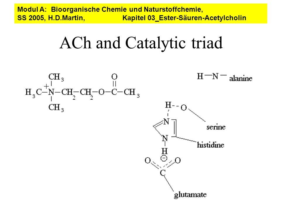 ACh and Catalytic triad 22 + Modul A: Bioorganische Chemie und Naturstoffchemie, SS 2005, H.D.Martin, Kapitel 03_Ester-Säuren-Acetylcholin