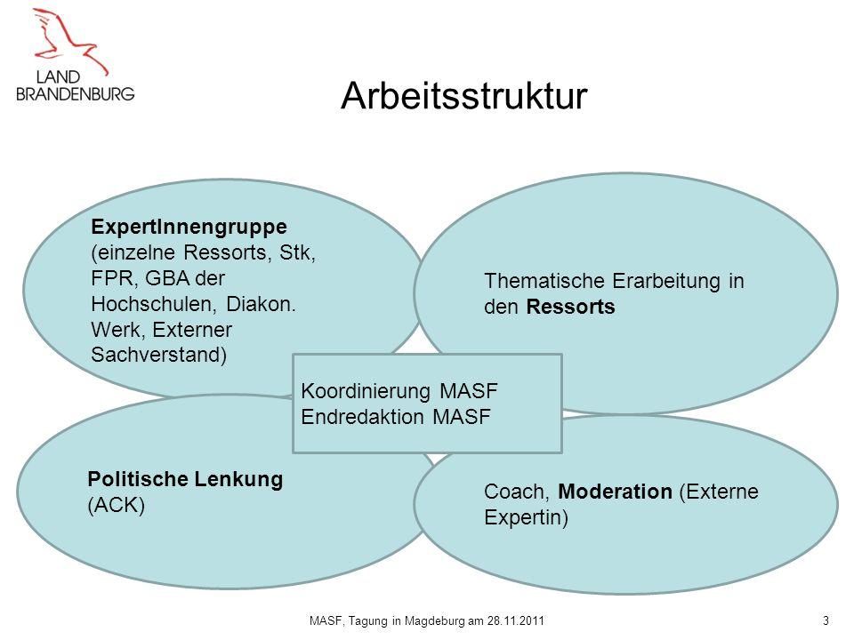 Arbeitsstruktur 3 ExpertInnengruppe (einzelne Ressorts, Stk, FPR, GBA der Hochschulen, Diakon. Werk, Externer Sachverstand) Thematische Erarbeitung in