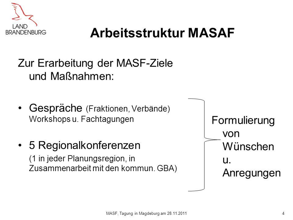 Arbeitsstruktur MASAF Zur Erarbeitung der MASF-Ziele und Maßnahmen: Gespräche (Fraktionen, Verbände) Workshops u. Fachtagungen 5 Regionalkonferenzen (