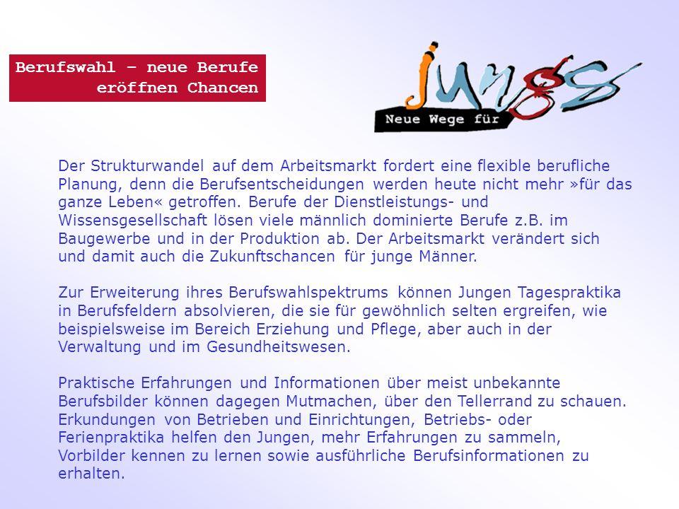 Ausbildungsjahr 2009 Quelle: Statistisches Bundesamt 2010 © Kompetenzzentrum Technik - Diversity - Chancengleichheit e.V.