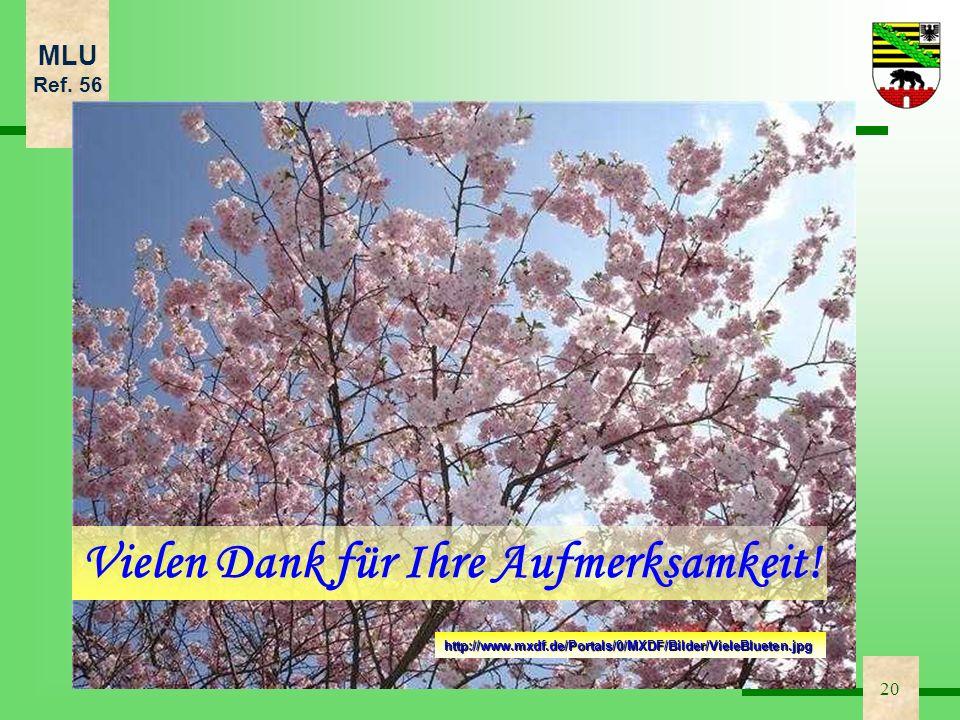MLU Ref. 56 20 http://www.mxdf.de/Portals/0/MXDF/Bilder/VieleBlueten.jpg Vielen Dank für Ihre Aufmerksamkeit!