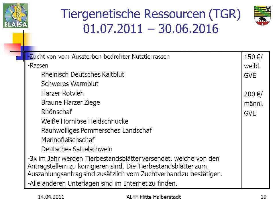 14.04.2011ALFF Mitte Halberstadt19 Tiergenetische Ressourcen (TGR) 01.07.2011 – 30.06.2016 -Zucht von vom Aussterben bedrohter Nutztierrassen -Rassen