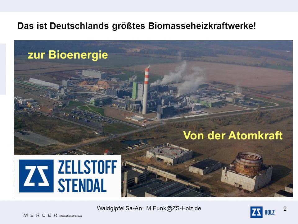 Waldgipfel Sa-An; M.Funk@ZS-Holz.de 2 Das ist Deutschlands größtes Biomasseheizkraftwerke! Von der Atomkraft zur Bioenergie