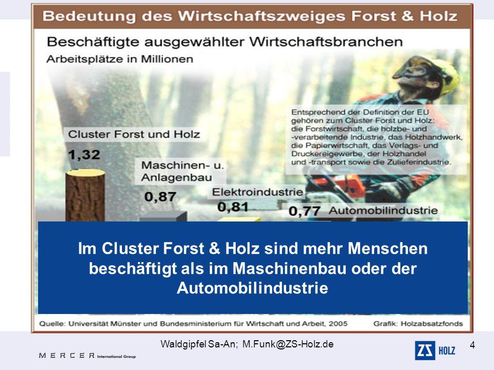 Waldgipfel Sa-An; M.Funk@ZS-Holz.de 4 Im Cluster Forst & Holz sind mehr Menschen beschäftigt als im Maschinenbau oder der Automobilindustrie