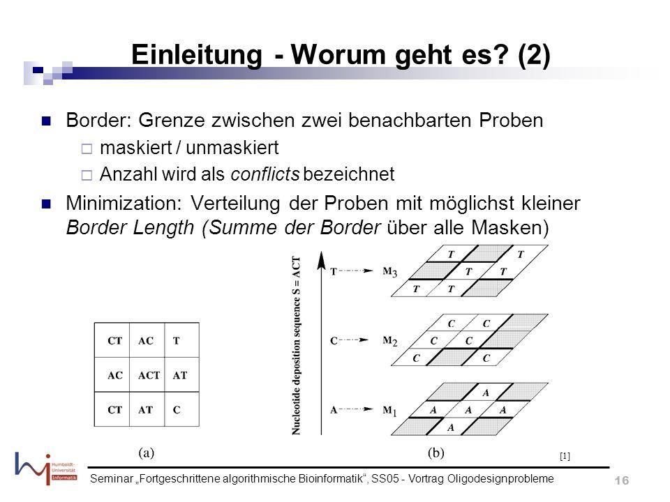 Seminar Fortgeschrittene algorithmische Bioinformatik, SS05 - Vortrag Oligodesignprobleme 16 Einleitung - Worum geht es? (2) Border: Grenze zwischen z