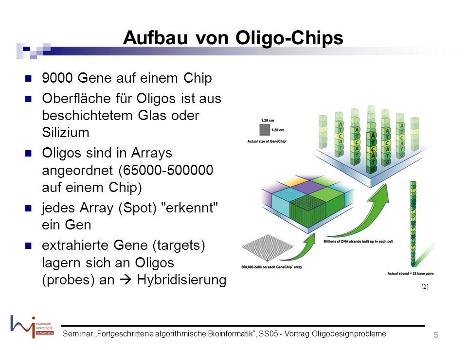 Seminar Fortgeschrittene algorithmische Bioinformatik, SS05 - Vortrag Oligodesignprobleme 5 Aufbau von Oligo-Chips 9000 Gene auf einem Chip Oberfläche