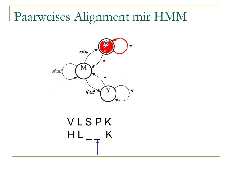 Paarweises Alignment mir HMM V L S P K H L _ _ K