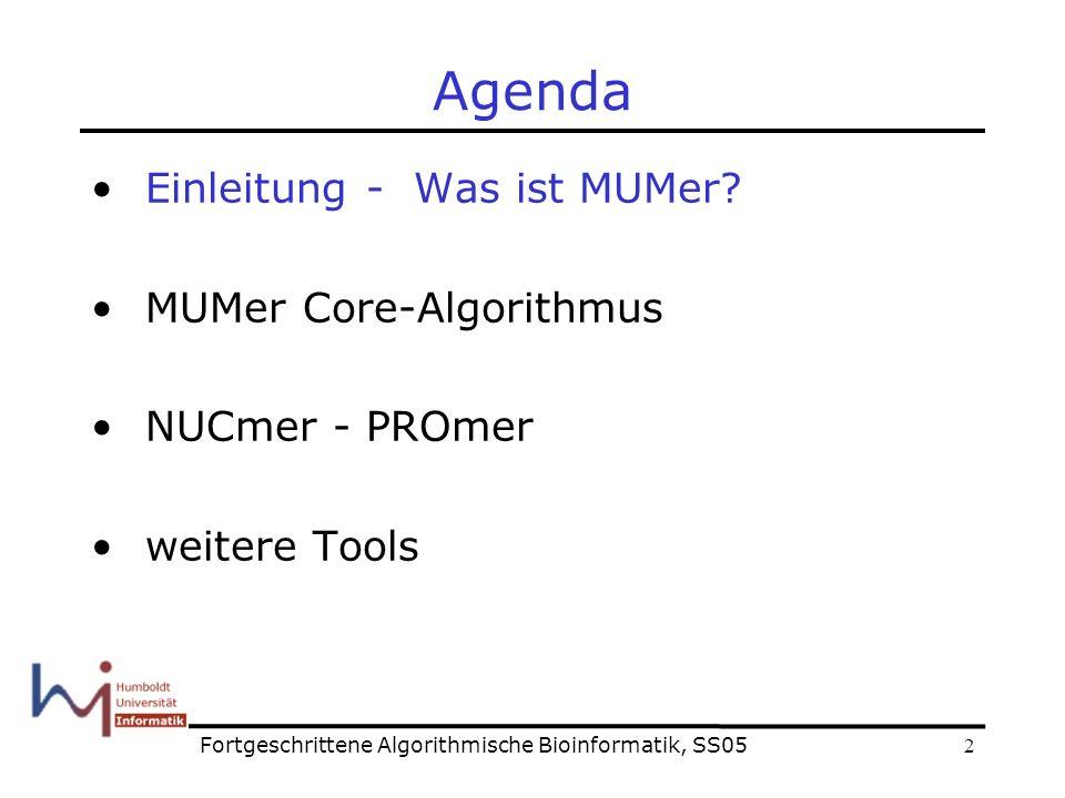 2 Agenda Einleitung - Was ist MUMer.