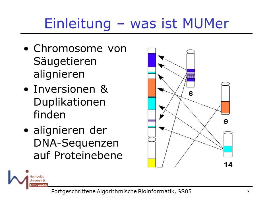 3 Einleitung – was ist MUMer Chromosome von Säugetieren alignieren Inversionen & Duplikationen finden alignieren der DNA-Sequenzen auf Proteinebene Fortgeschrittene Algorithmische Bioinformatik, SS05