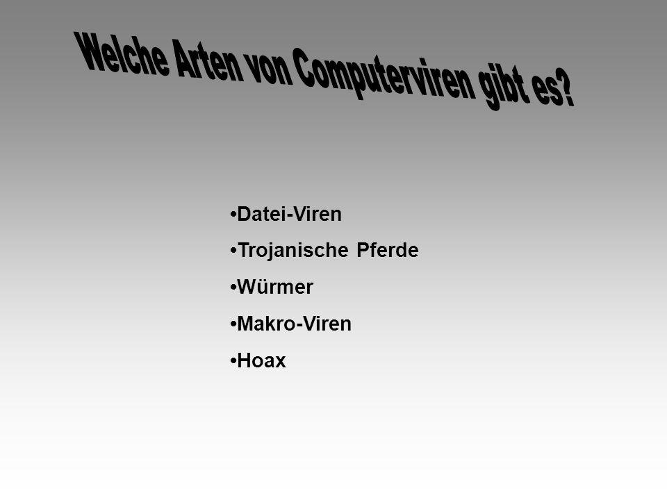 Datei-Viren Trojanische Pferde Würmer Makro-Viren Hoax
