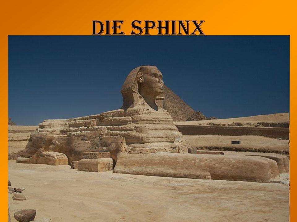 Die Sphinx Länge: 73,5m Breite: 6m Höhe: 20m Früher bunt bemalt Funktion: Sollte sie das Plateau bewachen? –Den Sonnengott Horus darstellen? –oder den