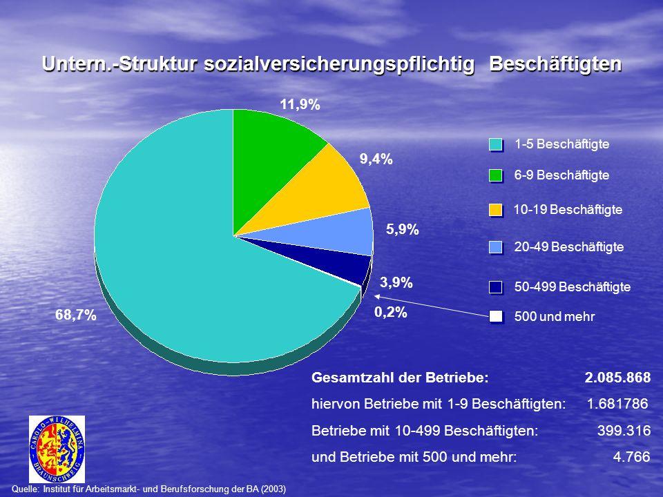 68,7% 3,9% 5,9% 9,4% 11,9% 1-5 Beschäftigte 50-499 Beschäftigte 20-49 Beschäftigte 10-19 Beschäftigte 6-9 Beschäftigte Quelle: Institut für Arbeitsmarkt- und Berufsforschung der BA (2003) 0,2% 500 und mehr Gesamtzahl der Betriebe: 2.085.868 hiervon Betriebe mit 1-9 Beschäftigten: 1.681786 Betriebe mit 10-499 Beschäftigten: 399.316 und Betriebe mit 500 und mehr: 4.766 Untern.-Struktur sozialversicherungspflichtig Beschäftigten