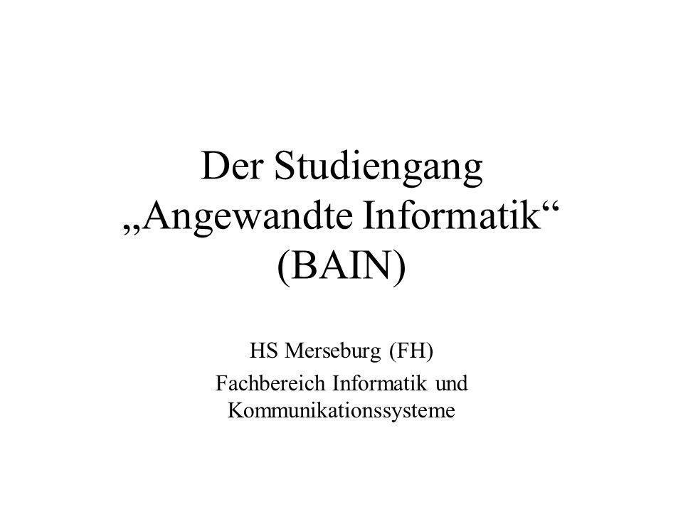 Der Studiengang Angewandte Informatik (BAIN) HS Merseburg (FH) Fachbereich Informatik und Kommunikationssysteme