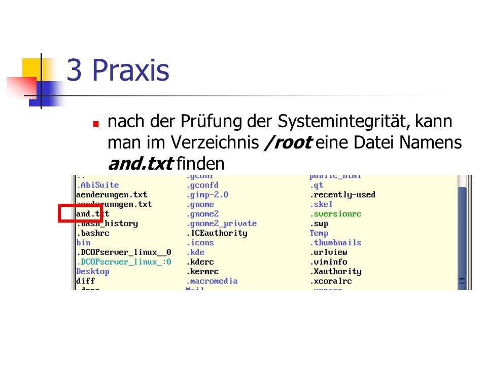 3 Praxis nach der Prüfung der Systemintegrität, kann man im Verzeichnis /root eine Datei Namens and.txt finden