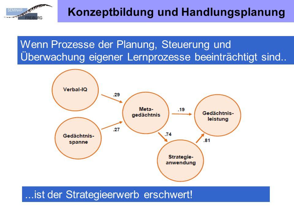 Konzeptbildung und Handlungsplanung Wenn Prozesse der Planung, Steuerung und Überwachung eigener Lernprozesse beeinträchtigt sind.....ist der Strategieerwerb erschwert!